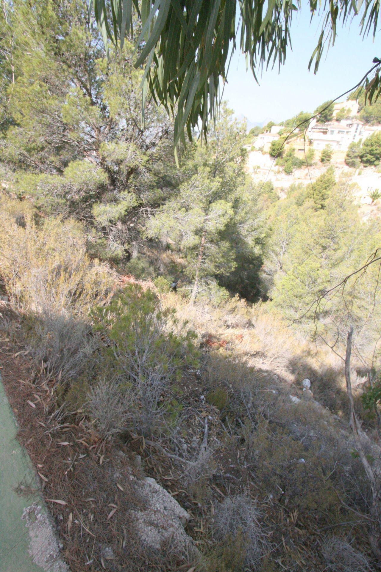 Grundstück in der Sierra de Altea